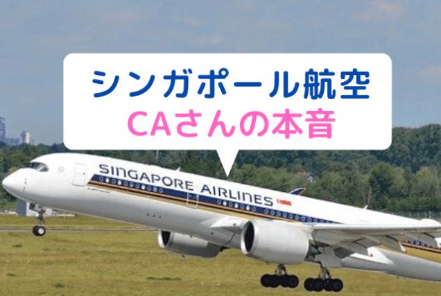 シンガポール航空 CA 美人